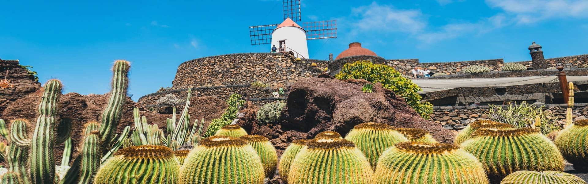 Kakteengarten Jardin de Cactus, Lanzarote – Werk des lanzerotenischen Künstlers César Manrique