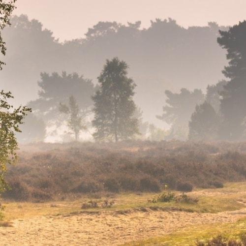 Kurzurlaub in den Niederlanden