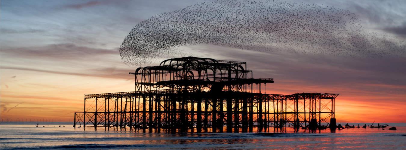 Blick auf den zerstörten West Pier in Brighton