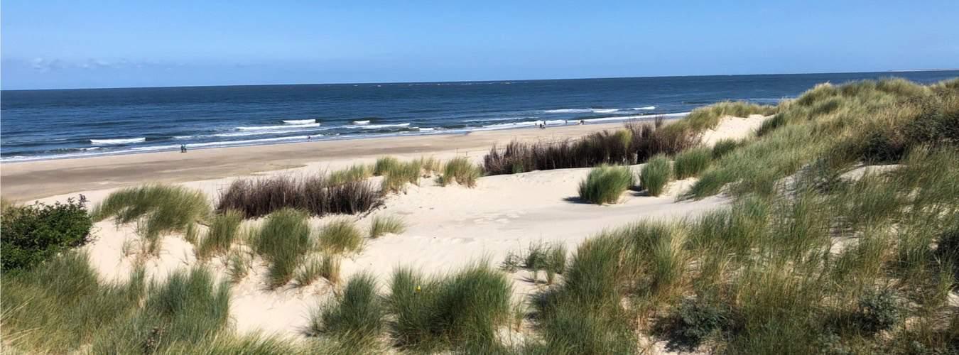 Borkum mit Dünen am Strand